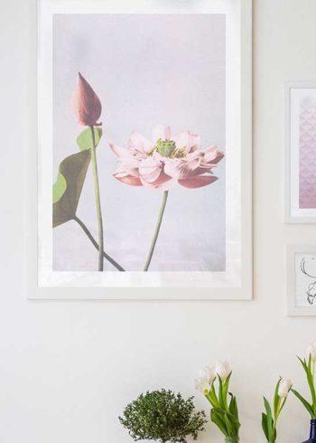 COLORIZED VINTAGE FLOWERS NO. 1 JULISTE