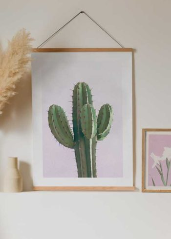 CACTUS ON PINK JULISTE